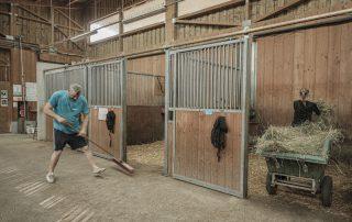 paille-foin-boxes-chevaux-association-les-amis-du-cheval-strasbourg