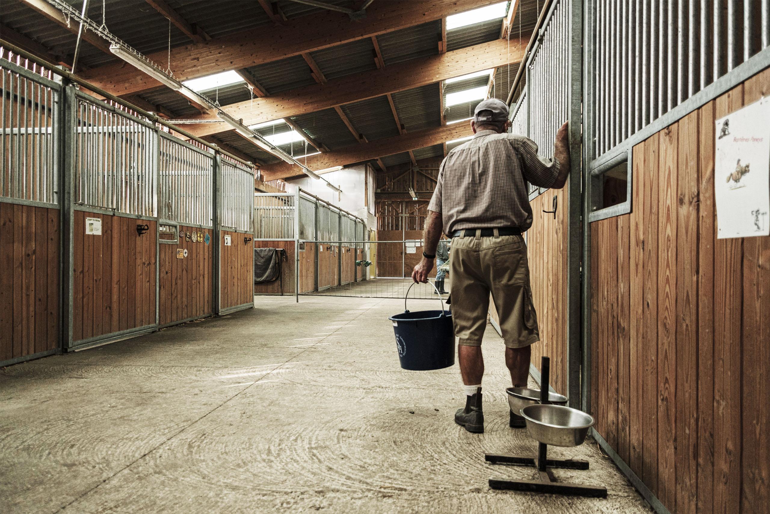 boxes-chevaux-interne-association-les-amis-du-cheval-strasbourg