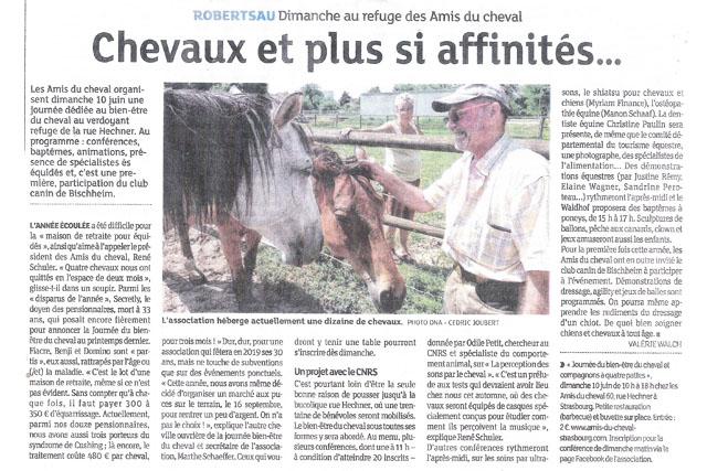 article-dna-journee-bien-etre-cheval-strasbourg-juin-2018